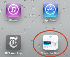 iPad.HomeScreenButton thumb Voice On The Web Improves Visitor Friendliness