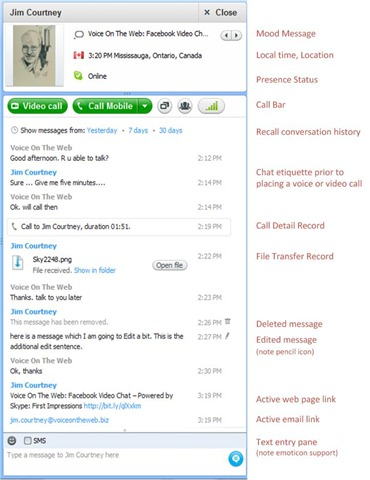 S4W5 5.ConversationPaneOverview thumb Microsoft Acquires Skype: What is the Fate of Windows Live Messenger?
